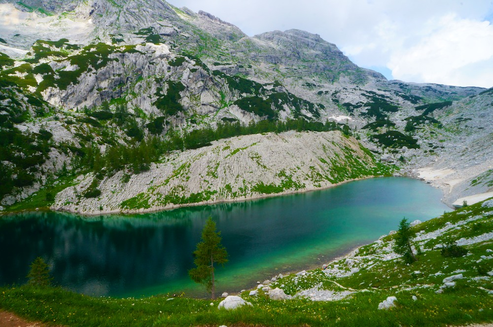 Slovenia imq8 2